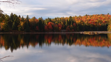 Amazing colourful reflection at Algonquin Provincial Park, Ontario.