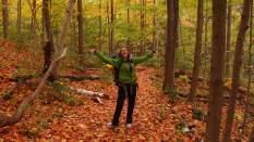 Fall, Hamilton