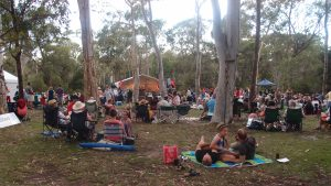 Jazz on the eucalypt lawn at the botanic gardens