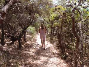 Walking on a lovely walking track near Sunshine Beach
