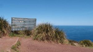 The Royal National Park Coastal Walk
