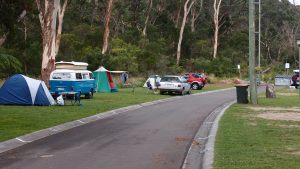 Our campground at Blackheath Glen Caravan Park