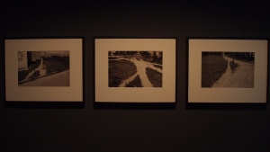 Mircea Cantor, Shortcuts, 2004, black and white photographs, triptych