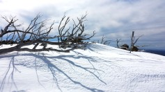 Great shadow at the top of Outer Limits at Blue Cow